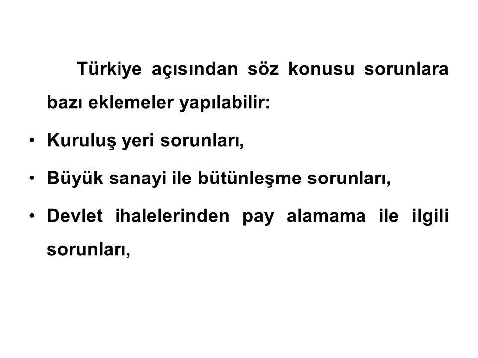 Türkiye açısından söz konusu sorunlara bazı eklemeler yapılabilir: