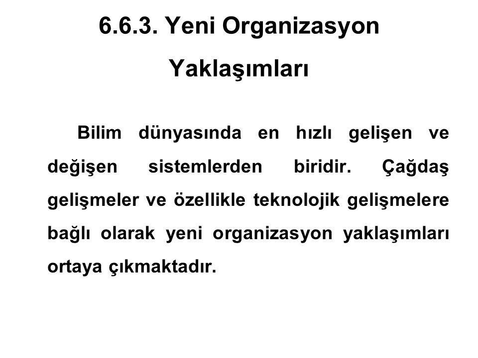 6.6.3. Yeni Organizasyon Yaklaşımları