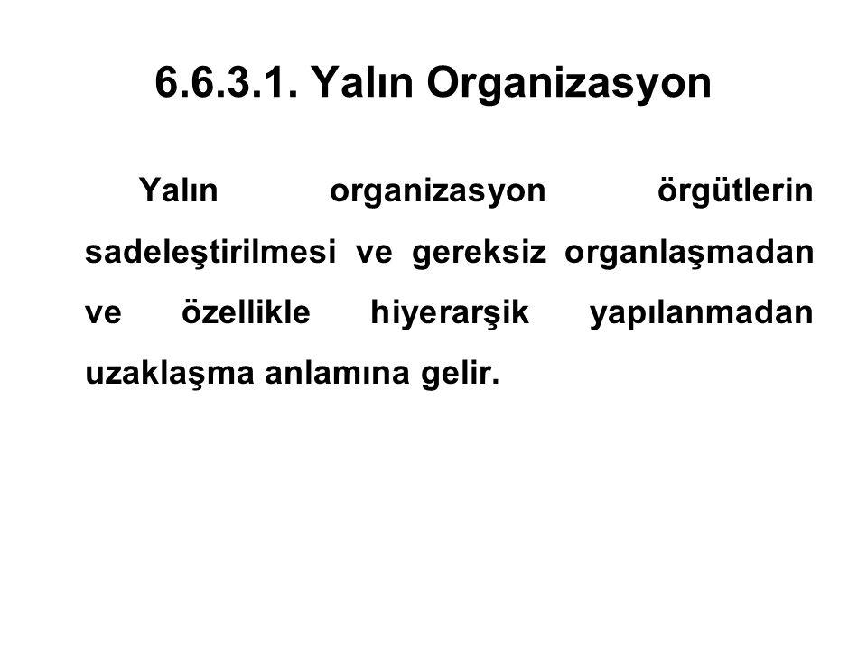 6.6.3.1. Yalın Organizasyon