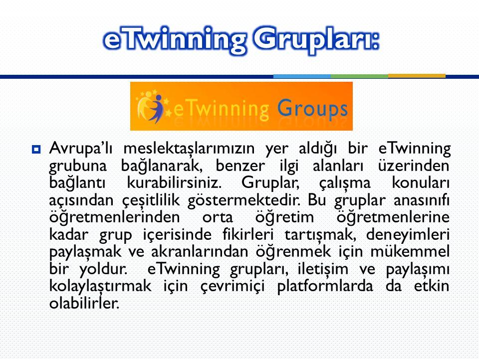 eTwinning Grupları: