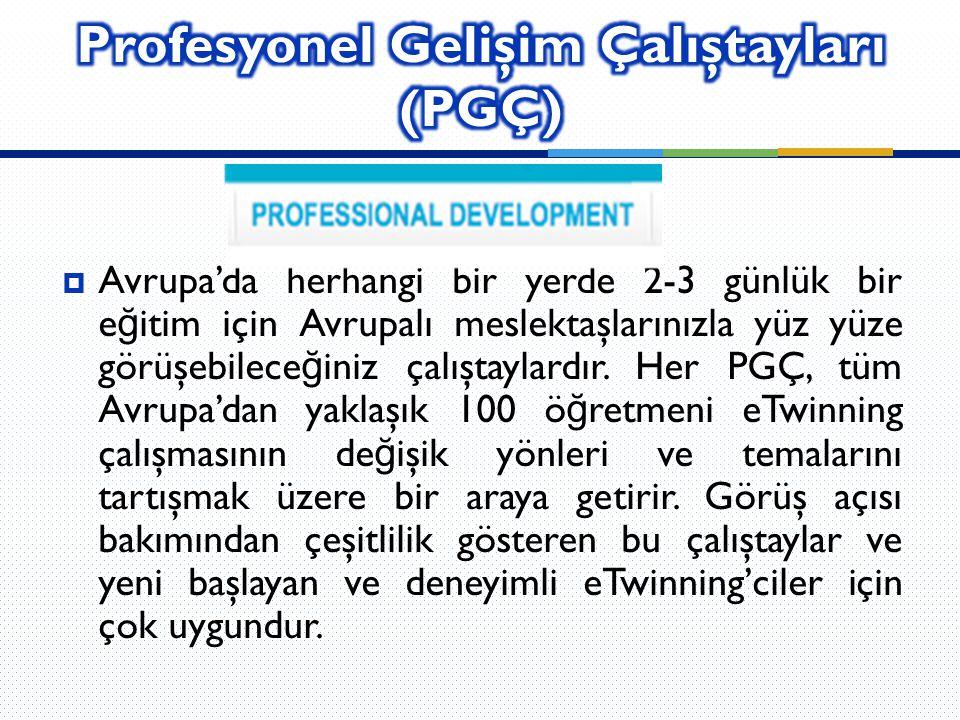 Profesyonel Gelişim Çalıştayları (PGÇ)