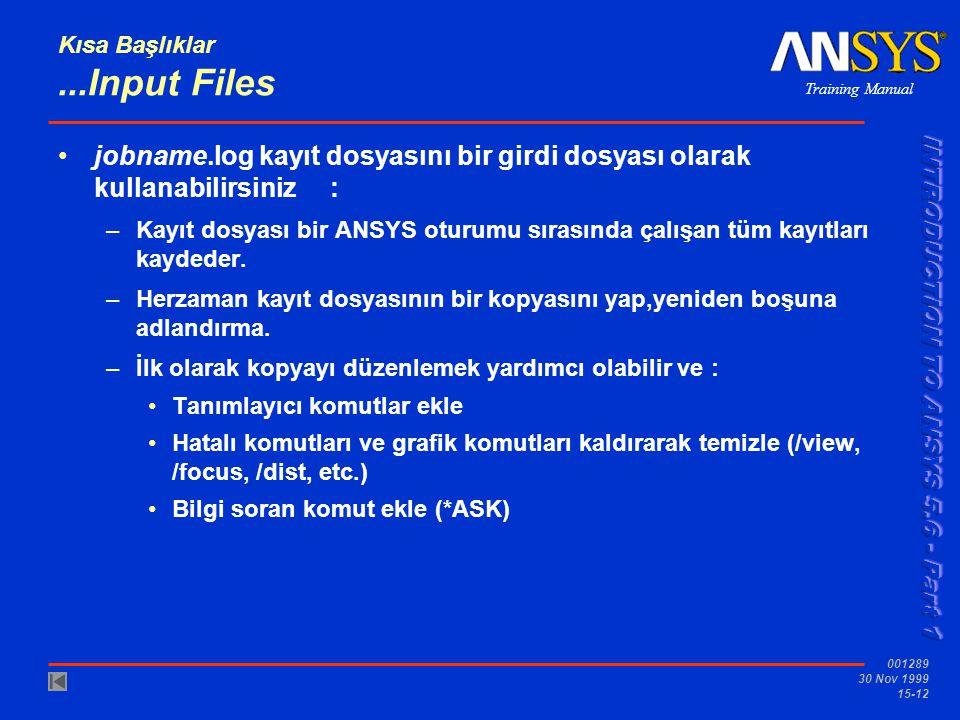 Kısa Başlıklar ...Input Files