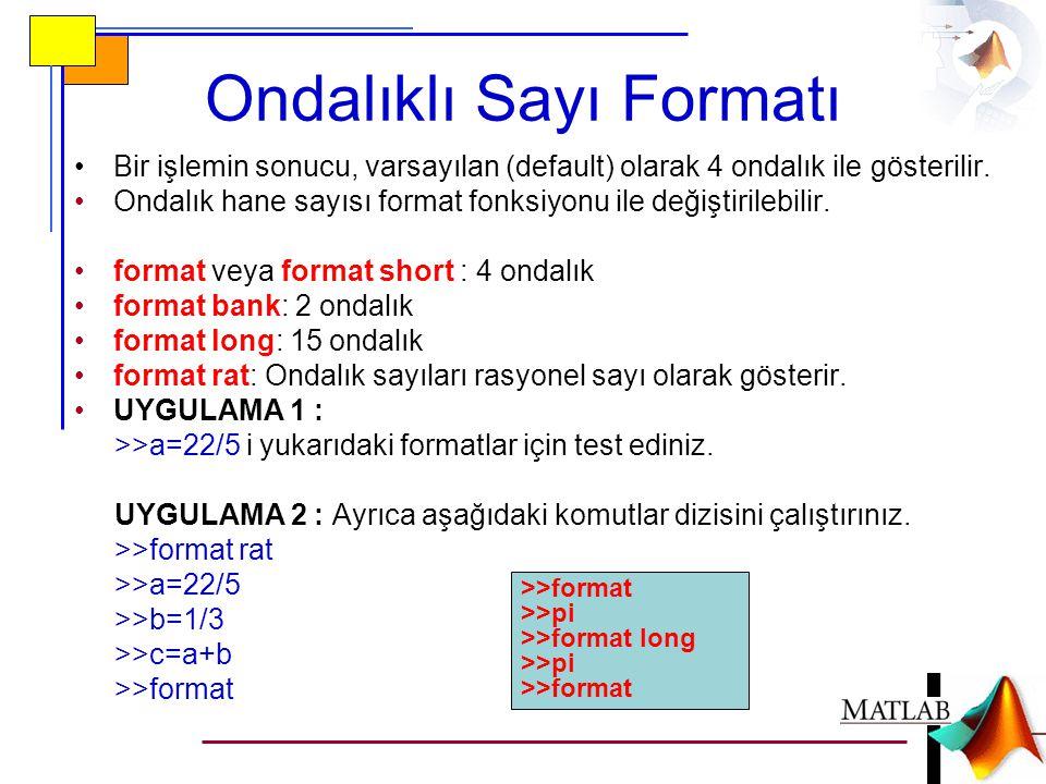 Ondalıklı Sayı Formatı