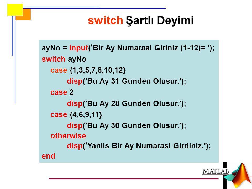 switch Şartlı Deyimi ayNo = input( Bir Ay Numarasi Giriniz (1-12)= );