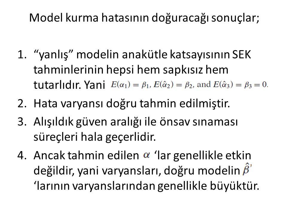 Model kurma hatasının doğuracağı sonuçlar;