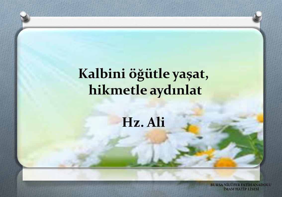 Kalbini öğütle yaşat, hikmetle aydınlat Hz. Ali