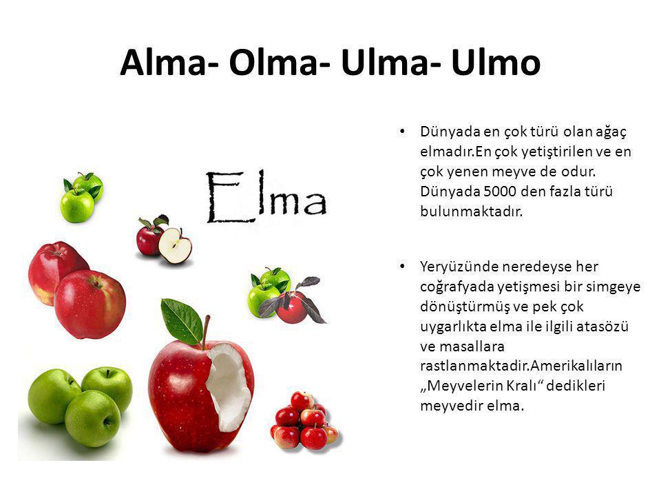Alma- Olma- Ulma- Ulmo