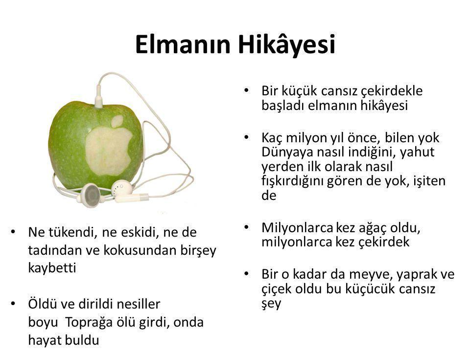 Elmanın Hikâyesi Bir küçük cansız çekirdekle başladı elmanın hikâyesi
