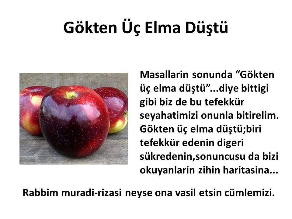 Gökten Üç Elma Düştü Masallarin sonunda Gökten üç elma düştü ...diye bittigi gibi biz de bu tefekkür seyahatimizi onunla bitirelim.