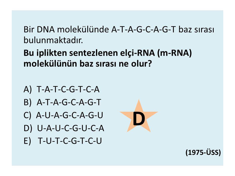 D Bir DNA molekülünde A-T-A-G-C-A-G-T baz sırası bulunmaktadır.