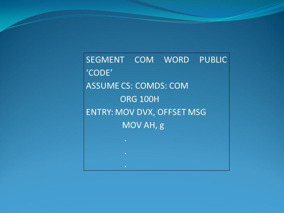 SEGMENT COM WORD PUBLIC 'CODE'