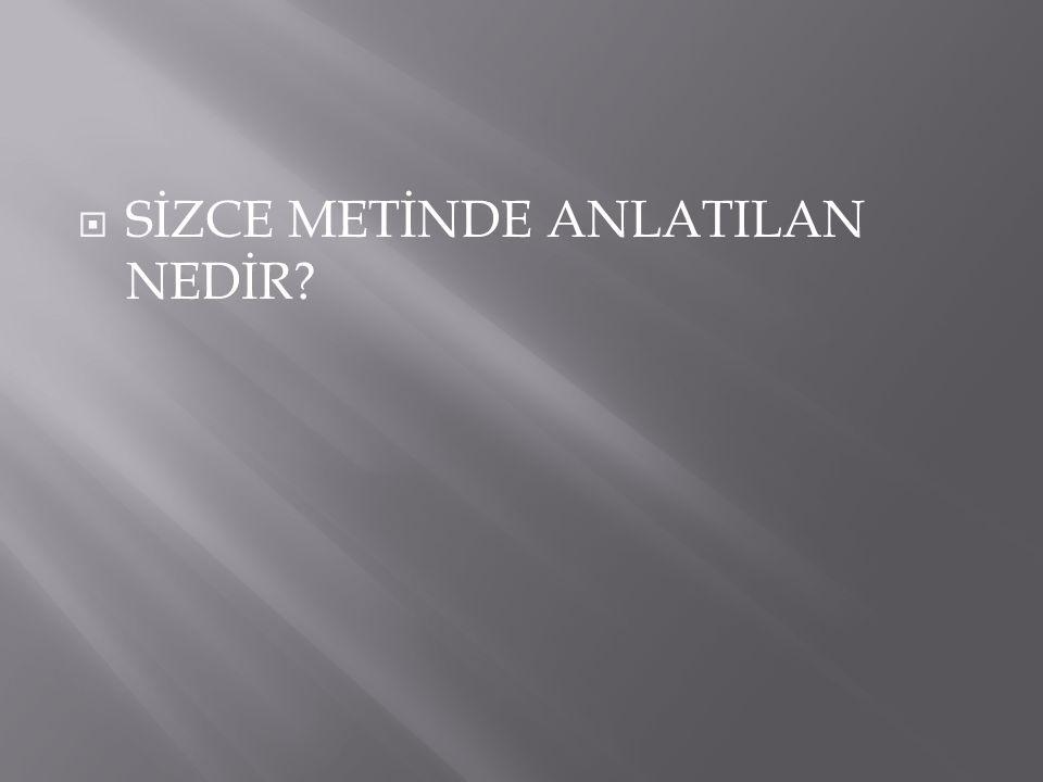 SİZCE METİNDE ANLATILAN NEDİR