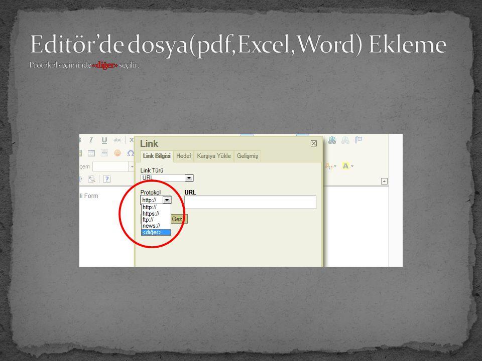 Editör'de dosya(pdf,Excel,Word) Ekleme Protokol seçiminde «diğer» seçilir .