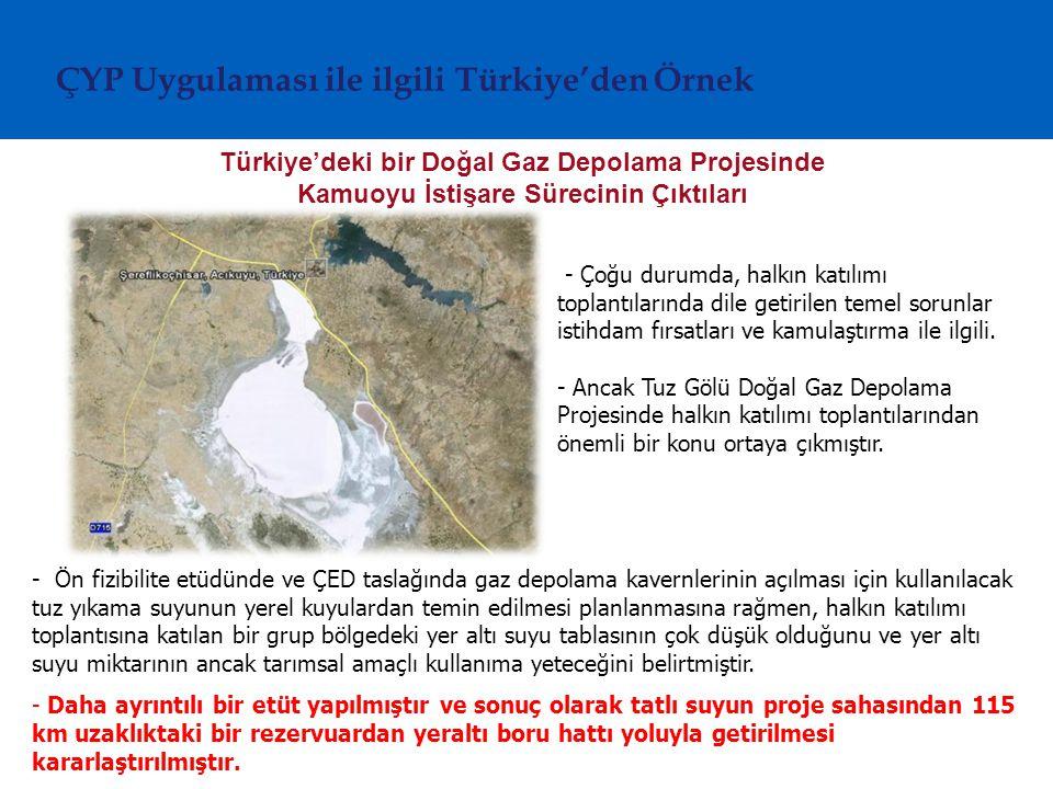 ÇYP Uygulaması ile ilgili Türkiye'den Örnek