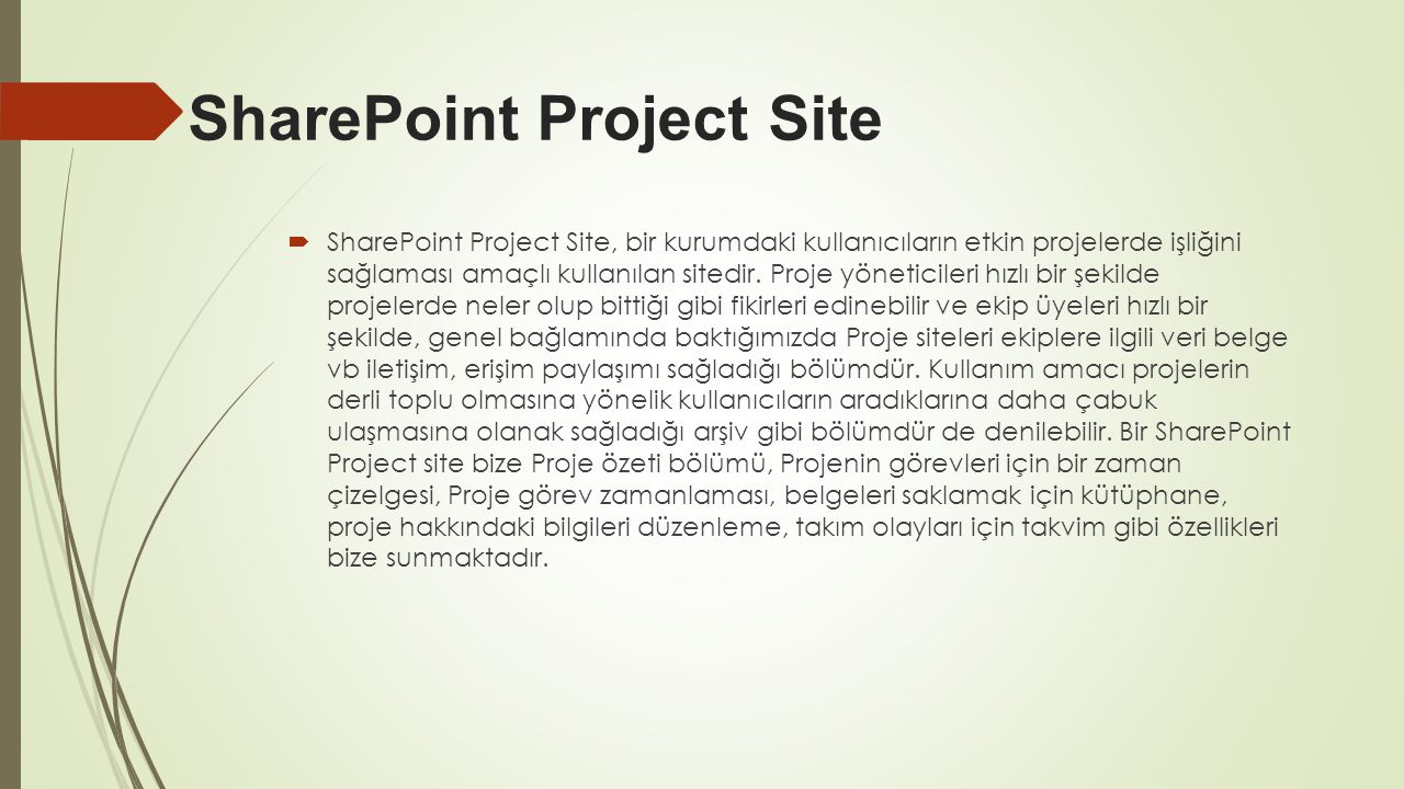 SharePoint Project Site