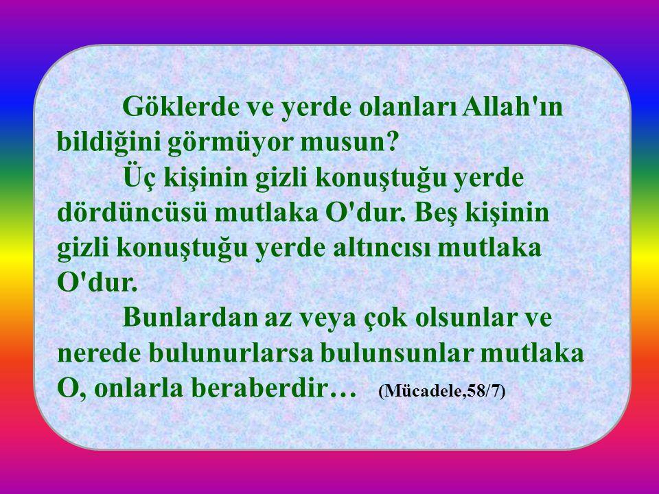 Göklerde ve yerde olanları Allah ın bildiğini görmüyor musun