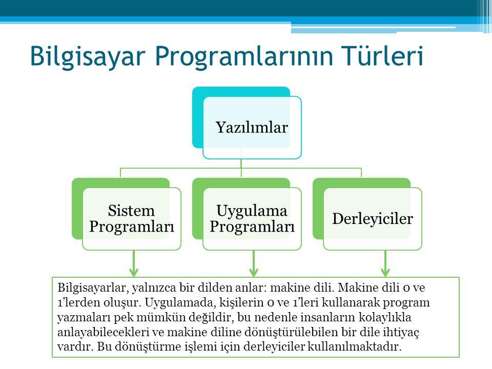 Bilgisayar Programlarının Türleri