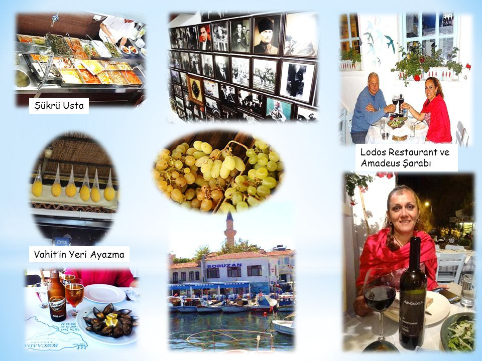 Şükrü Usta Lodos Restaurant ve Amadeus Şarabı Vahit'in Yeri Ayazma
