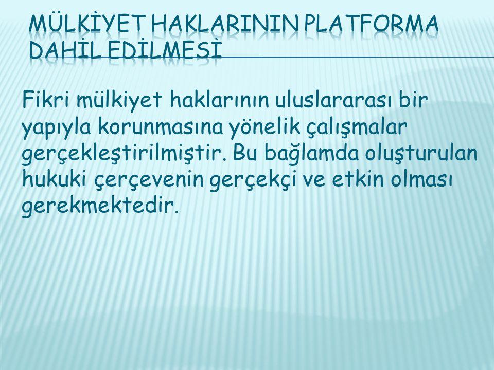 Mülkİyet HaklarInIn Platforma Dahİl Edİlmesİ