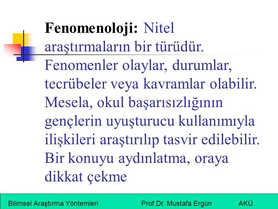 Fenomenoloji: Nitel araştırmaların bir türüdür