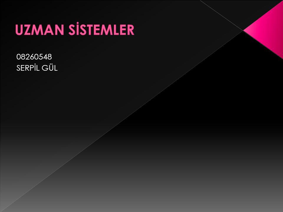 UZMAN SİSTEMLER 08260548 SERPİL GÜL
