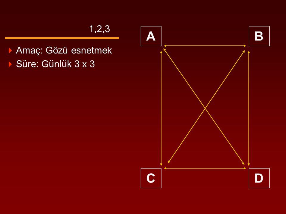 1,2,3 A B C D Amaç: Gözü esnetmek Süre: Günlük 3 x 3