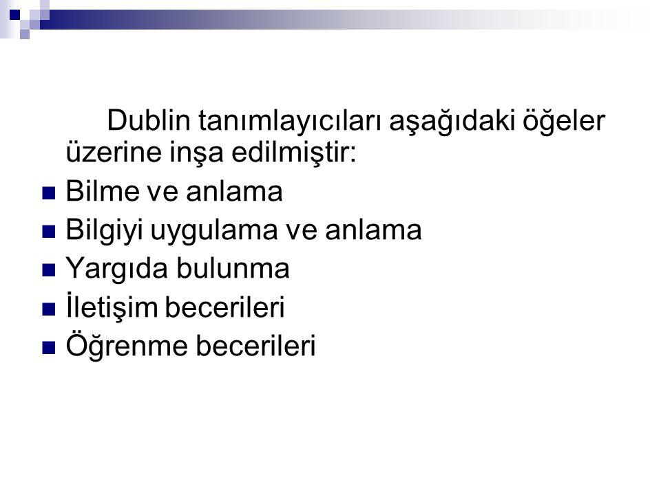Dublin tanımlayıcıları aşağıdaki öğeler üzerine inşa edilmiştir: