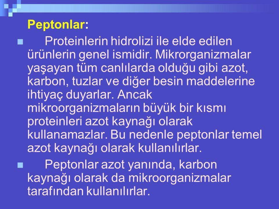 Peptonlar: