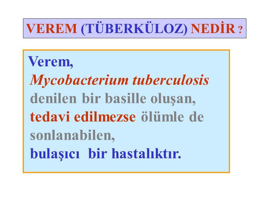 Mycobacterium tuberculosis denilen bir basille oluşan,