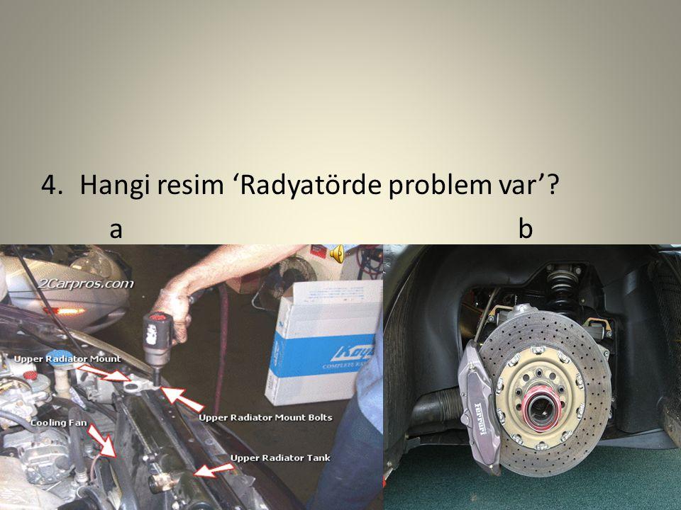 4. Hangi resim 'Radyatörde problem var' a b