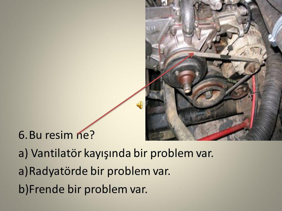 Bu resim ne. a) Vantilatör kayışında bir problem var.