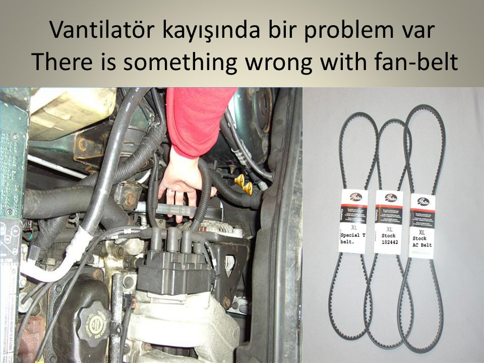 Vantilatör kayışında bir problem var There is something wrong with fan-belt