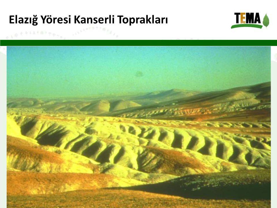 Elazığ Yöresi Kanserli Toprakları