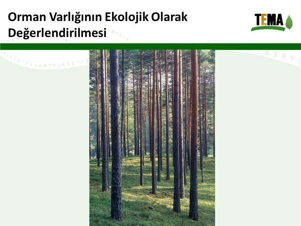 Orman Varlığının Ekolojik Olarak Değerlendirilmesi