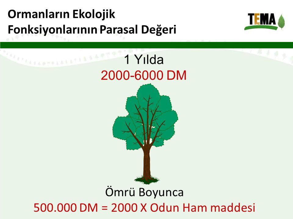 Ormanların Ekolojik Fonksiyonlarının Parasal Değeri.