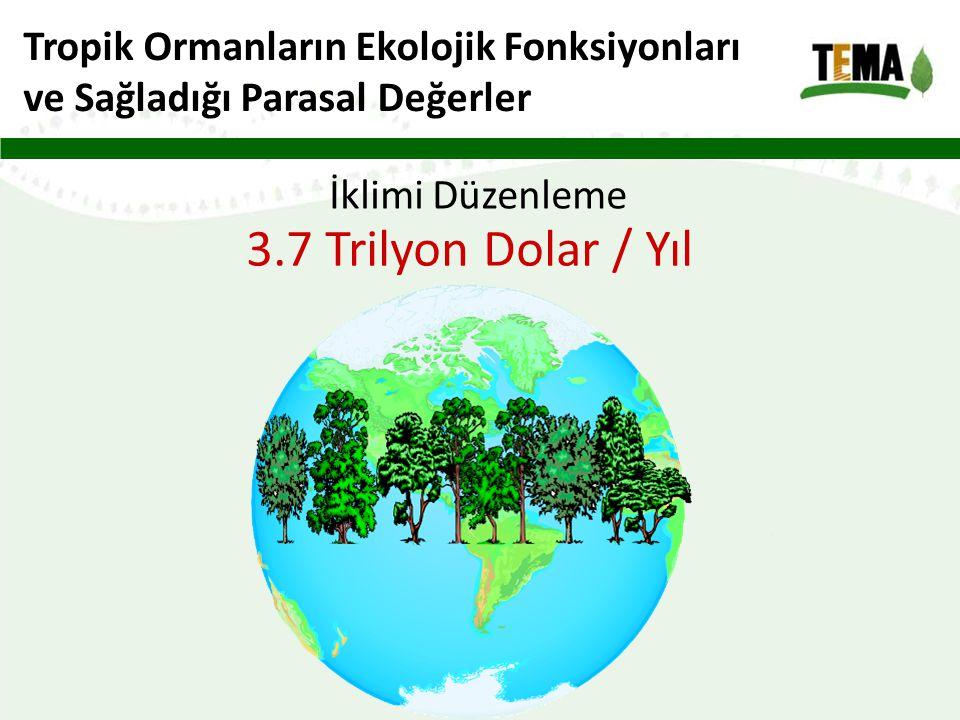 3.7 Trilyon Dolar / Yıl Tropik Ormanların Ekolojik Fonksiyonları
