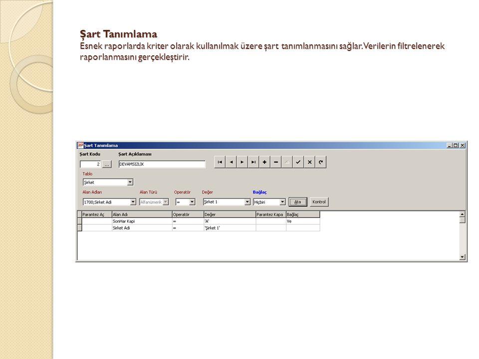 Şart Tanımlama Esnek raporlarda kriter olarak kullanılmak üzere şart tanımlanmasını sağlar.