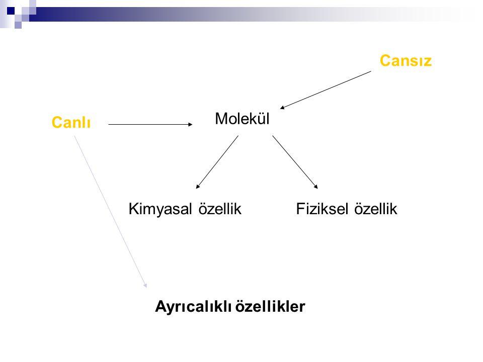 Cansız Molekül Canlı Kimyasal özellik Fiziksel özellik Ayrıcalıklı özellikler