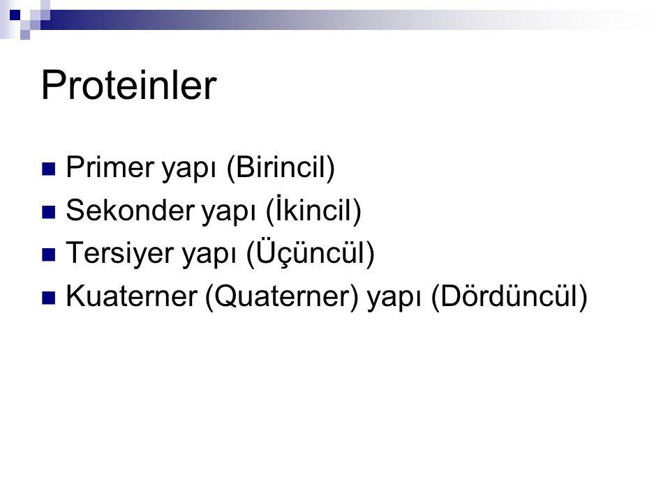 Proteinler Primer yapı (Birincil) Sekonder yapı (İkincil)
