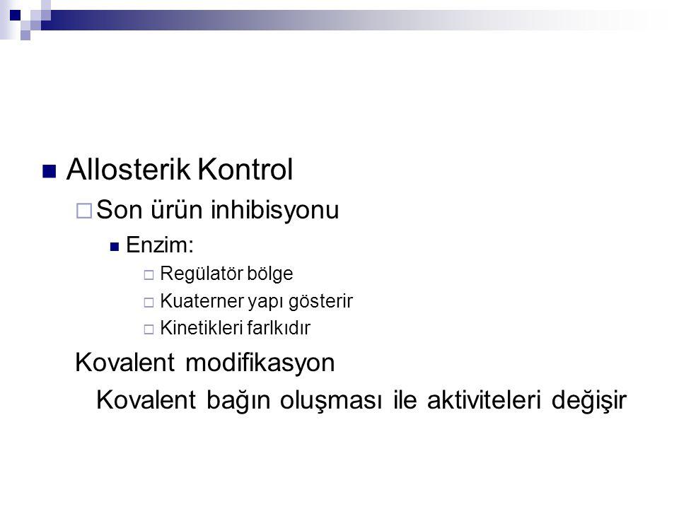 Allosterik Kontrol Son ürün inhibisyonu Kovalent modifikasyon
