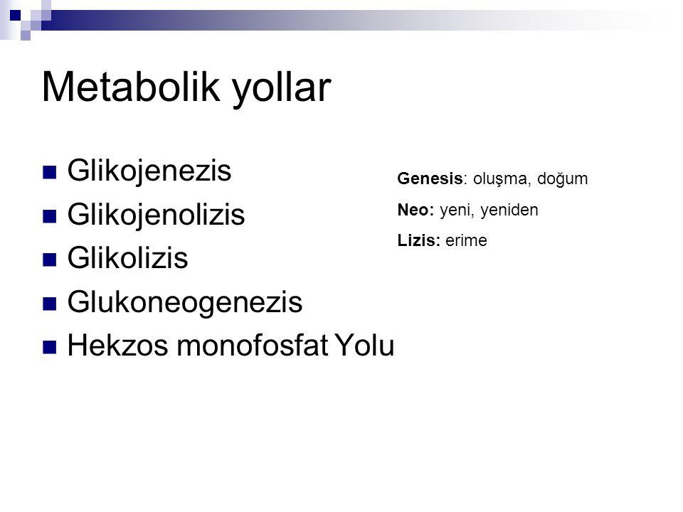 Metabolik yollar Glikojenezis Glikojenolizis Glikolizis