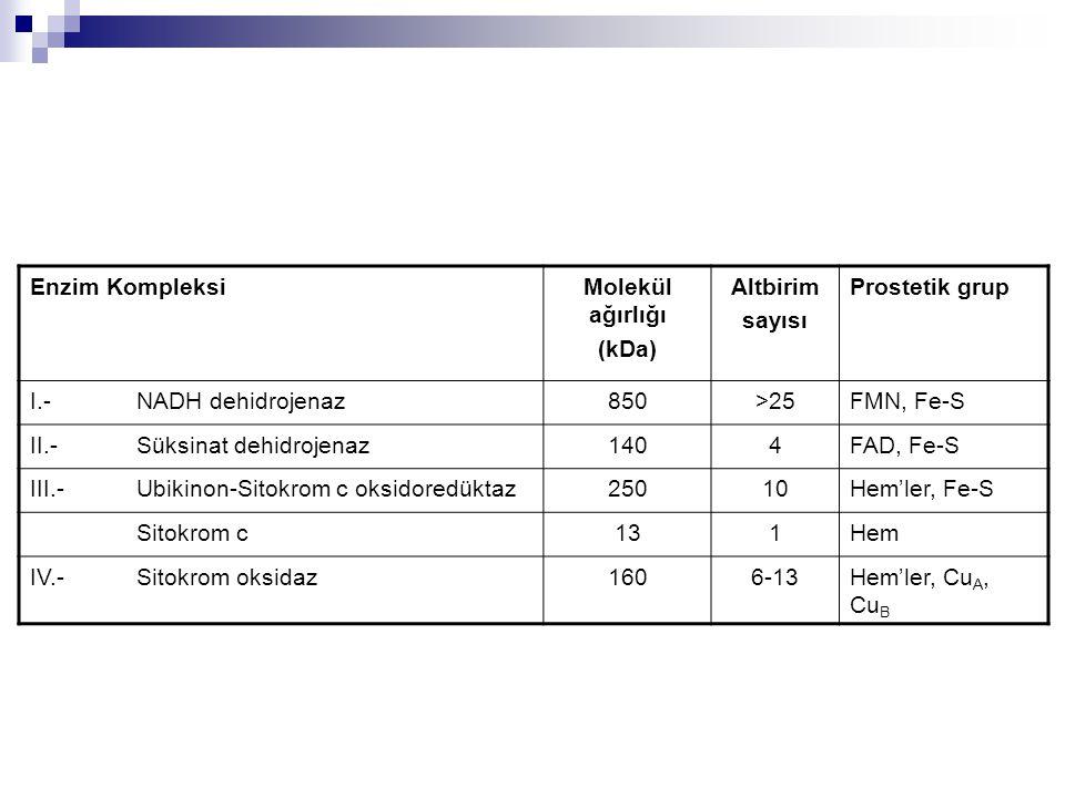 Enzim Kompleksi Molekül ağırlığı. (kDa) Altbirim. sayısı. Prostetik grup. I.- NADH dehidrojenaz.