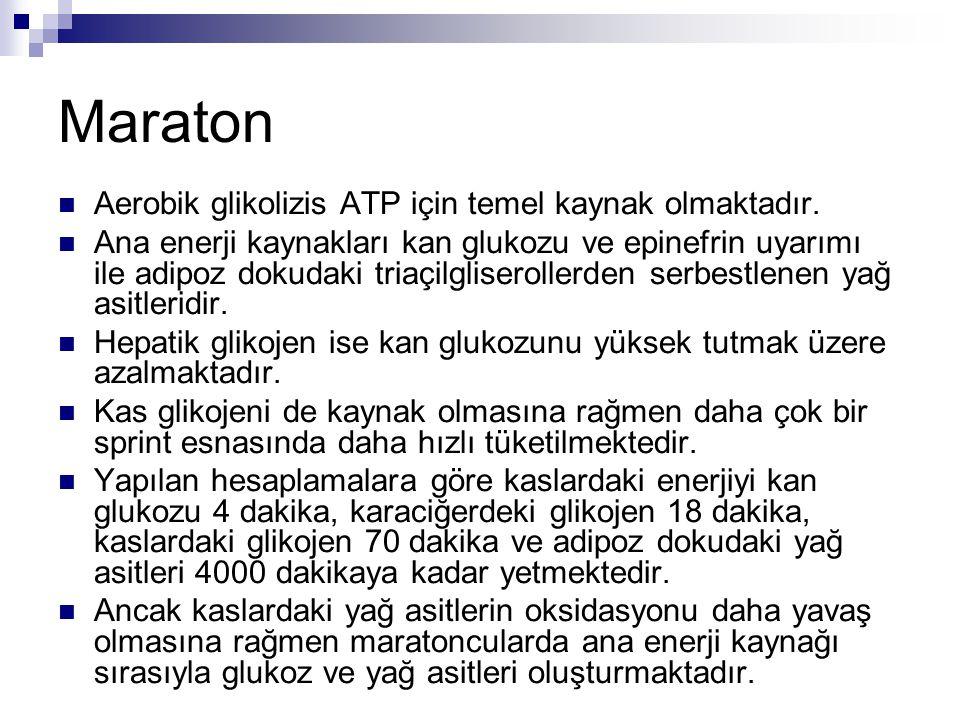 Maraton Aerobik glikolizis ATP için temel kaynak olmaktadır.