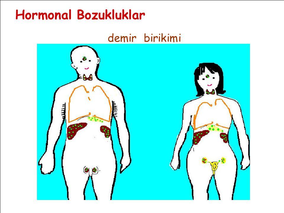 Hormonal Bozukluklar demir birikimi