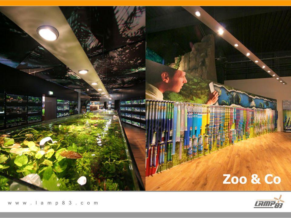 Referanslarımız Zoo & Co