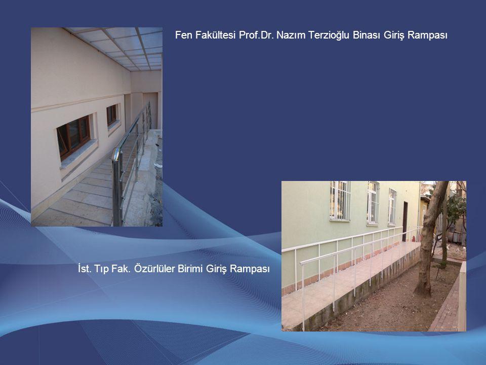 Fen Fakültesi Prof.Dr. Nazım Terzioğlu Binası Giriş Rampası