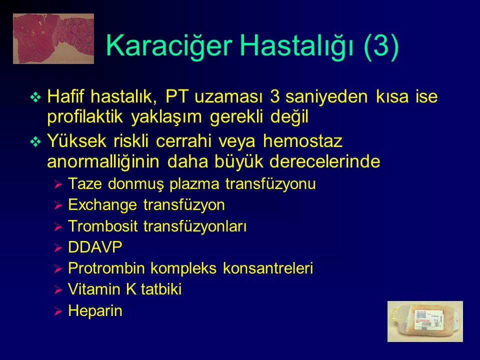Karaciğer Hastalığı (3)