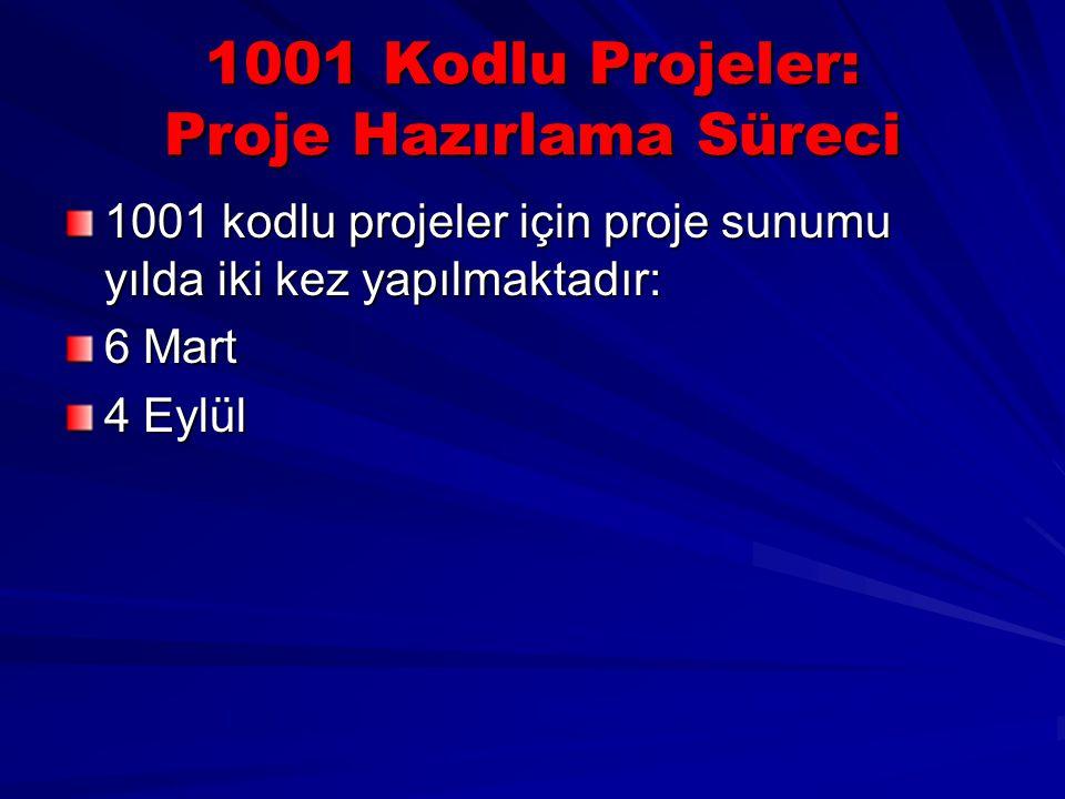 1001 Kodlu Projeler: Proje Hazırlama Süreci