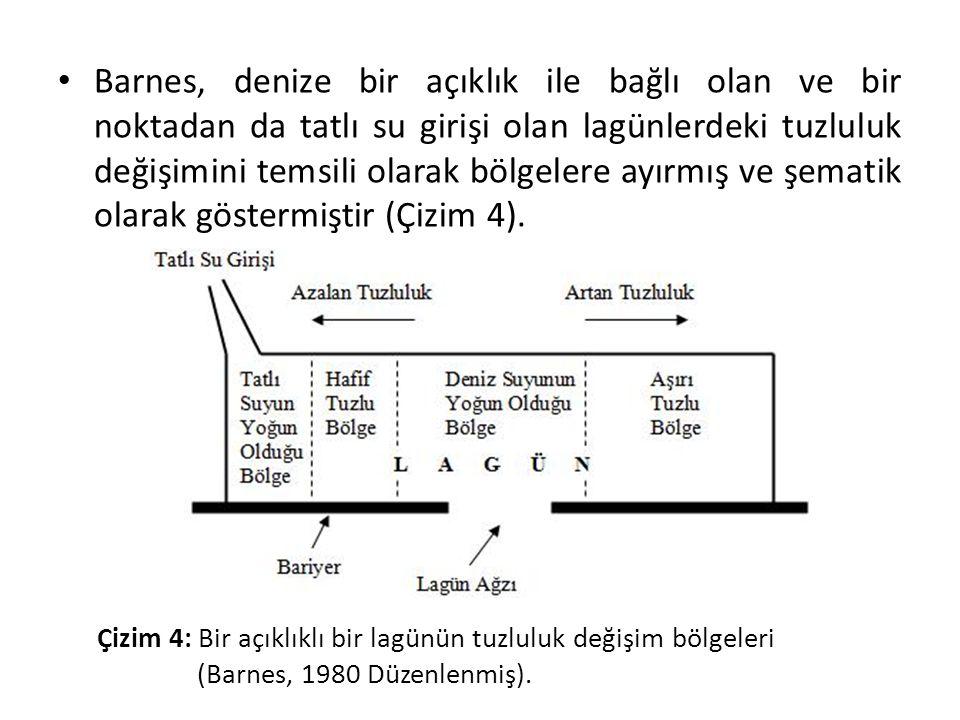 Barnes, denize bir açıklık ile bağlı olan ve bir noktadan da tatlı su girişi olan lagünlerdeki tuzluluk değişimini temsili olarak bölgelere ayırmış ve şematik olarak göstermiştir (Çizim 4).