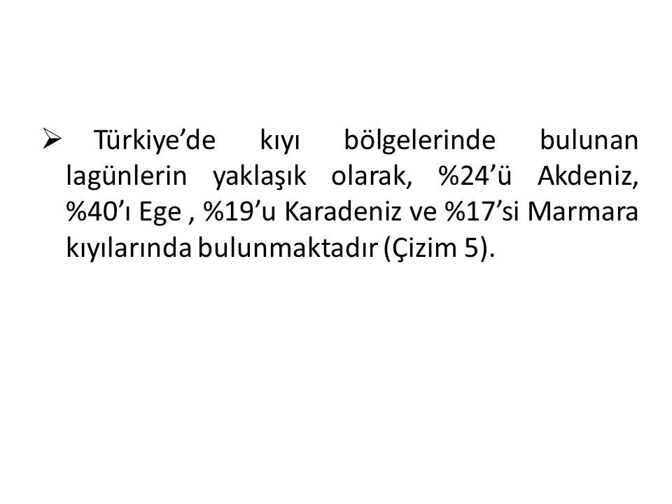 Türkiye'de kıyı bölgelerinde bulunan lagünlerin yaklaşık olarak, %24'ü Akdeniz, %40'ı Ege , %19'u Karadeniz ve %17'si Marmara kıyılarında bulunmaktadır (Çizim 5).